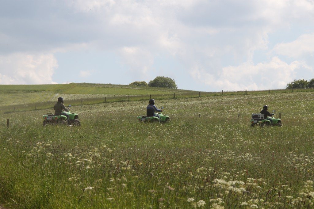 Quad ride through the fields